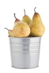 Ripe pears on metal buket
