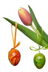 wunderschöne Tulpen und Ostereier