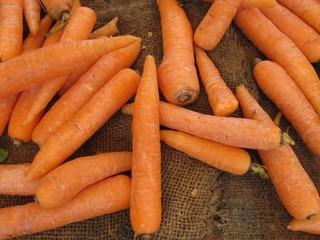 Zanahorias, carrots.