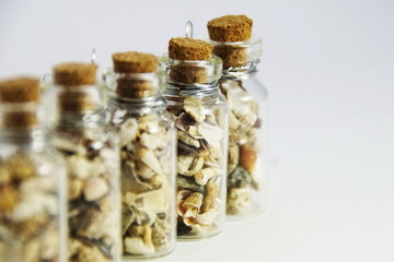 small seashells from Meditteranian Sea in a small glass bottle