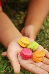 Colorful of macaron in hand on background of grass.