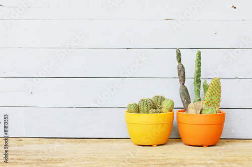 Papiers peints Cactus Cactus and water pot on wood table