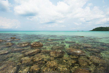 Reef and shallow beach at Koh Kood Island , Thailand