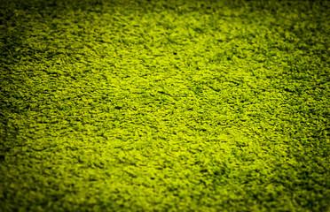 green carpet background closeup