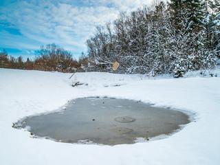 Zugefrorener Tümpel in der Winterlandschaft