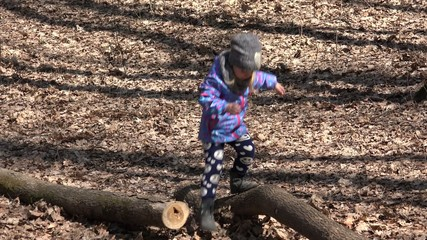 Adorable Little Girl Walk on Old Pine Tree in Early Spring Fores