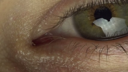Close-up Macro Shot of Eye