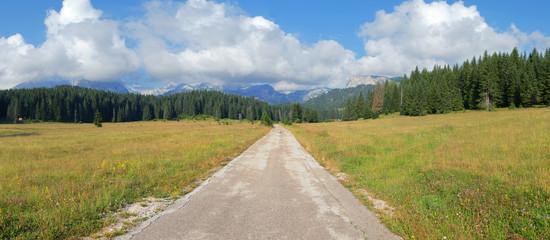 Straight Mountain Road In Montenegro
