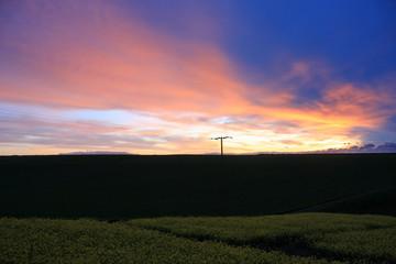 sunset over a rape field