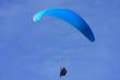 paraglider - 81825145