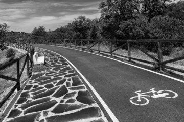 Bike lane  b&w