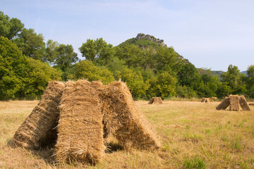 Blocks with hay in the fields