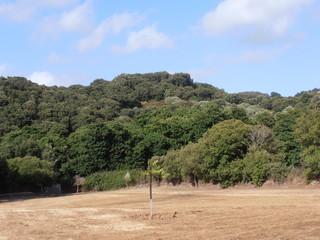 Campo isolato