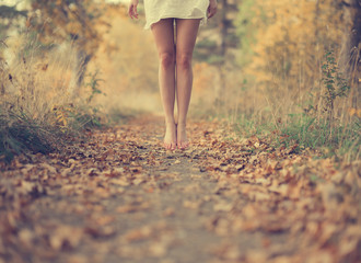 Beautiful female legs in the autumn road