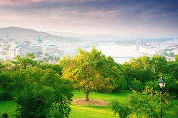 Cityscape Budapset, Hungary