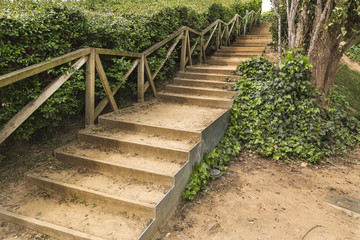 Stairs path on a green park