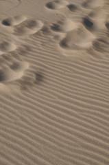 Playa y pisadas
