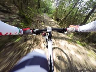 ciclista guida bicicletta in un sentiero nel bosco