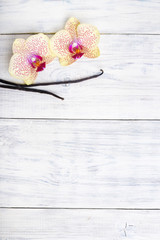 Vanilla pods and orchid flowers on wooden background