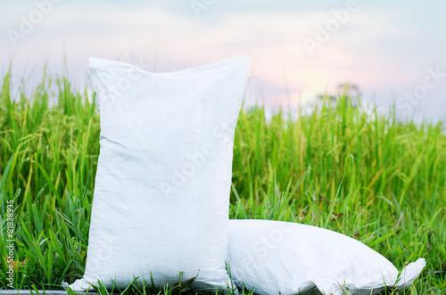 Fertilizer bag over green rice - 81838935