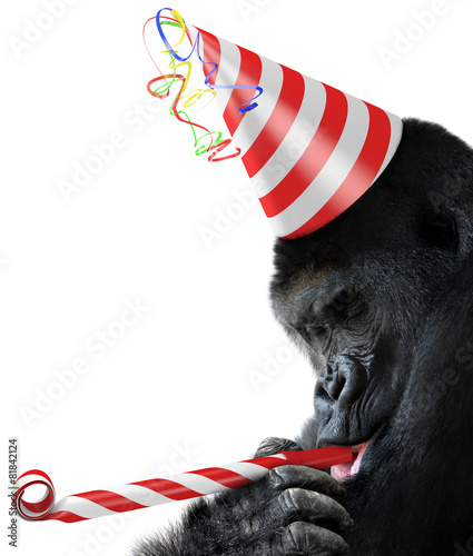 Keuken foto achterwand Aap Gorilla party animal with a birthday hat and noisemaker horn