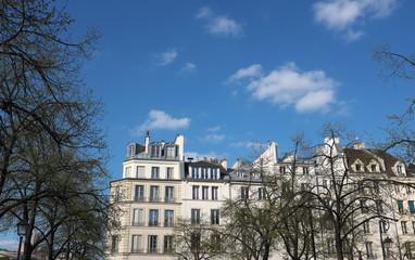 immeubles anciens et arbres, Paris