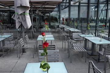 roses rouges sur tables de café, terrasse