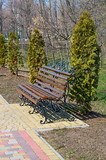 the bench among tui