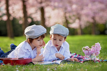 Beautiful portrait of two adorable caucasian boys, reading a boo