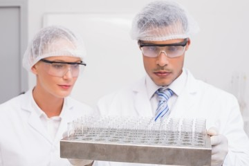 Scientists examining tubes