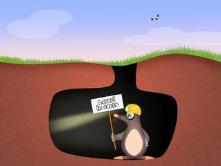 mole in the den