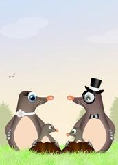 family moles