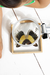 Dziewczynka ogląda kolorowego motyla przez szkło powiekszające.