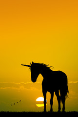 unicorn at sunset
