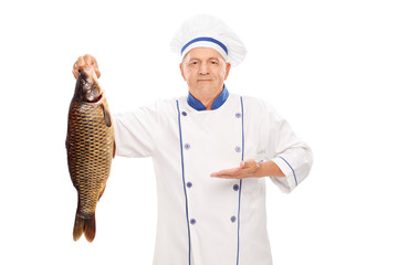 Mature chef holding a big freshwater fish