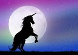 unicorn in the moonlight - 81859186