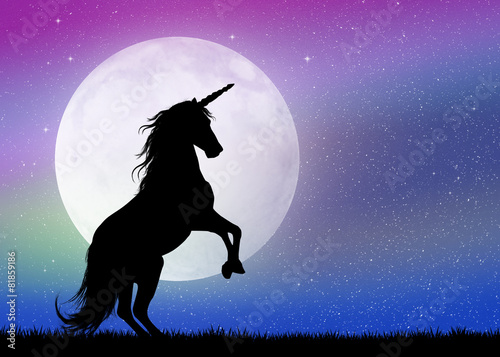 unicorn in the moonlight - 81859186