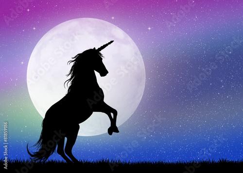 Leinwanddruck Bild unicorn in the moonlight