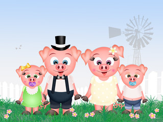 pigs family