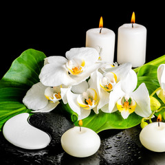 spa concept of orchid flower, phalaenopsis, leaf with dew, candl