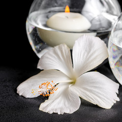 spa concept of white hibiscus flower and candles in vase with wa
