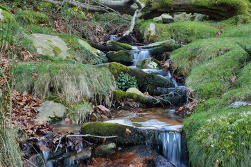 Close-up of a stream in the mountain slope