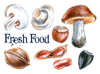 fresh food on a white background