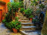Cinque Terre, Vernazza - Italy - 81864524