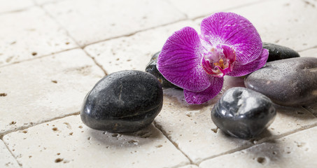 mineral decor with pink orchid for spa treatment