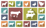 farm animals silhouettes isolated on white