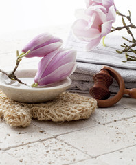 magnolia flowers for beauty spa