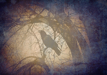 Scary Crow On A Branch