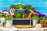 Garden tools and flowers on a wooden background