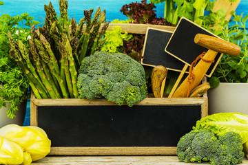 Fresh green vegetables harvested in the garden